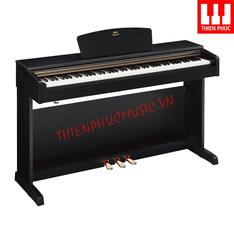 Cong ty Piano dien gia re TPHCM Yamaha YDP151 Vung Tau