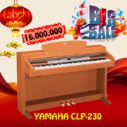 clp-230