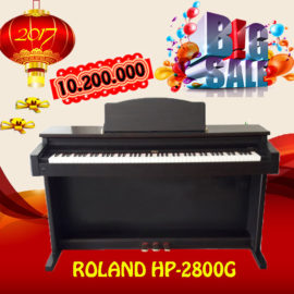hp-2800g